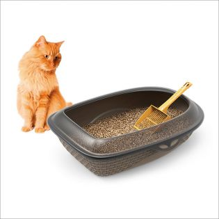 19110-Taupe  Open Cat Toilet